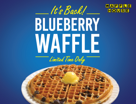 Blueberry Waffle It8217s back